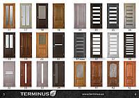 Двері Термінус шпоновані дубом, фото 1