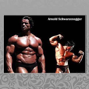 Плакат Арнольд Шварценеггер 06