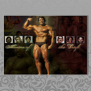 Плакат Арнольд Шварценеггер 07