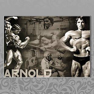 Плакат Арнольд Шварценеггер 10