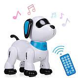 Робот собака на радиоуправлении Stunt Dog К 21, фото 4