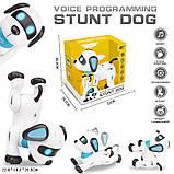 Робот собака на радиоуправлении Stunt Dog К 21, фото 3