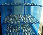 "Сетка для сушки рыбы Stenson ""U"" SF23636 3 яруса, 30х30х60 см, фото 4"
