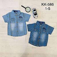 Джинсовая рубашка на мальчика, S&D, 1,2,3,4,5 лет,  № KK-586