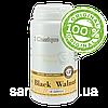 Black Walnut (Сантегра - Santegra) Черный орех - противопаразитарное и противогрибковое средство