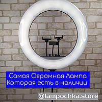 RL-21 Кольцевая Лампа-Гигант 54 см + Штатив Универсальная лампа для Блогера или Салона Красоты