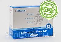 Chlorophyll Forte GP (Сантегра - Santegra) Хлорофилл Форте