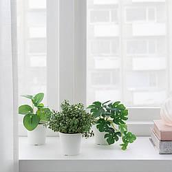 Искусственное растение в горшке IKEA FEJKA 6 см 3 шт 504.852.07