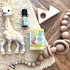 Рідкий вітамін Д3 для дітей на маслянной основі (400 МО), 10 мл (300 доз) California Gold Nutrition, фото 3