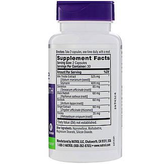 Расторопша, 525 мг, 60 капсул, Natrol, фото 2
