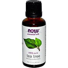 Ефірні олії чайного дерева (30 мл) Now Foods