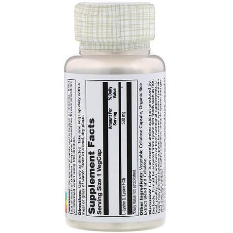L-лізин, L-Lysine, 500 mg, 60 VegCaps Solaray, фото 2