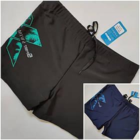 Мужские шорты для плаванья большие  размер 56-64