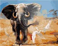 Картина для рисования по номерам Стратег Слон 40х50см (VA-0964)