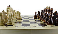 Шахматы гроссмейстерские 30х30см