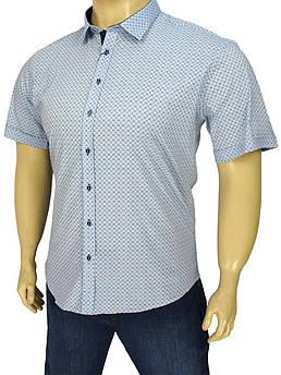 Літня чоловіча сорочка Negredo 9000 BK 02 блакитна у великому  розмірі