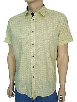 Літня чоловіча сорочка  Negredo 9000 NK 01 в жовтому кольорі