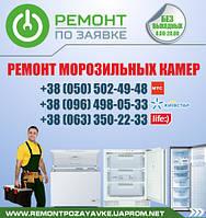 Ремонт морозильников Днепропетровск. Ремонт морозильных камер, ларей в Днепропетровске. Ремонт ларей.