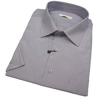 Турецька чоловіча сорочка короткий рукав Desibel 560 BKC 02 у великому розмірі