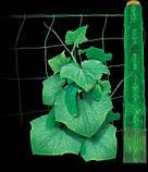 Сетка огуречная (шпалерная) 500м*1,7м Венгрия, фото 2