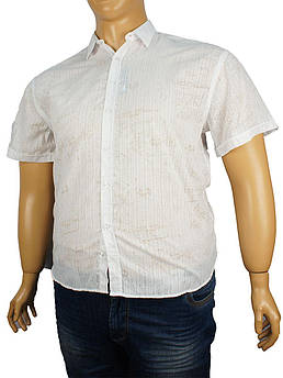 Чоловіча сорочка Negredo BKM 02 великого розміру
