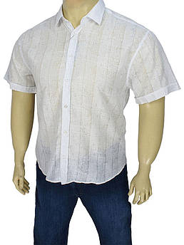 Чоловіча сорочка Negredo BKM 02 великого розміру біла