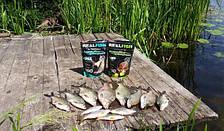 "Прикормка Real Fish ""Короп"" (Кисла Груша), фото 3"