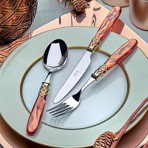 Набор столовых приборов 24 предмета FRANCE GOLD STEEL ORANGE