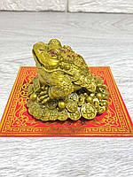 Денежная Жаба на монетах, лягушка на монетах - символ богатства и материального благополучия