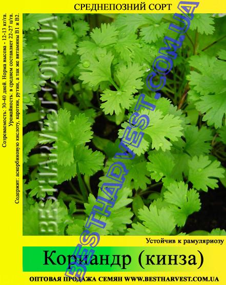 Семена Кориандра (кинза) 1 кг
