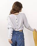 Світло-сіра класична блуза з гудзиками, фото 3