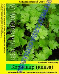 Семена Кориандра (кинза) 25 кг (мешок)