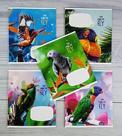 Тетрадь 12 листов линия You make me fly 02846(12л) Школярик Украина