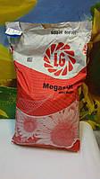 Семена подсолнечника МЕГАСАН, устойчив к пяти расам заразихи А-Е, Среднеранний. Лимагрейн / Импорт