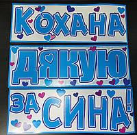 Набір наклейок на авто (або інші поверхні) для зустрічі малюка з пологового будинку