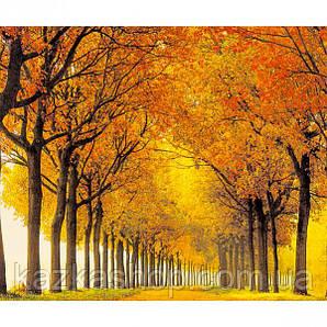 """Алмазная живопись """"Осенний парк"""", мозаика по номерам размер 30*40см Китай"""