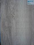 Межкомнатные двери Новый Стиль Аскона ПВХ Viva с матовым стеклом, цвет бук бук баварский, фото 2