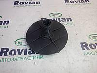 Б/У Кріплення запаски (Хечбек) Renault MEGANE 2 2003-2006 (Рено Меган 2), 8200317791 (БУ-205301)