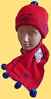 Шапка и шарфик детские, красные с синей отделкой