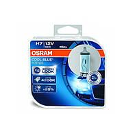 Автомобільні лампи H7 Osram 4200K +20% Cool Blue INTENSE 64210CBI, фото 1