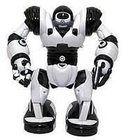 Мини - робот Робосапиен