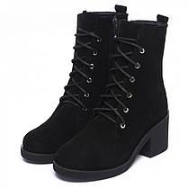 Ботинки высокие замшевые на среднем каблуке 950-03, фото 2