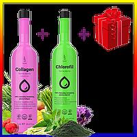Коллаген + хлорофилл+подарок Duolife. Польша. Для суставов, кожи, волос и зрения. Дуолайф Collagene Chlorofil