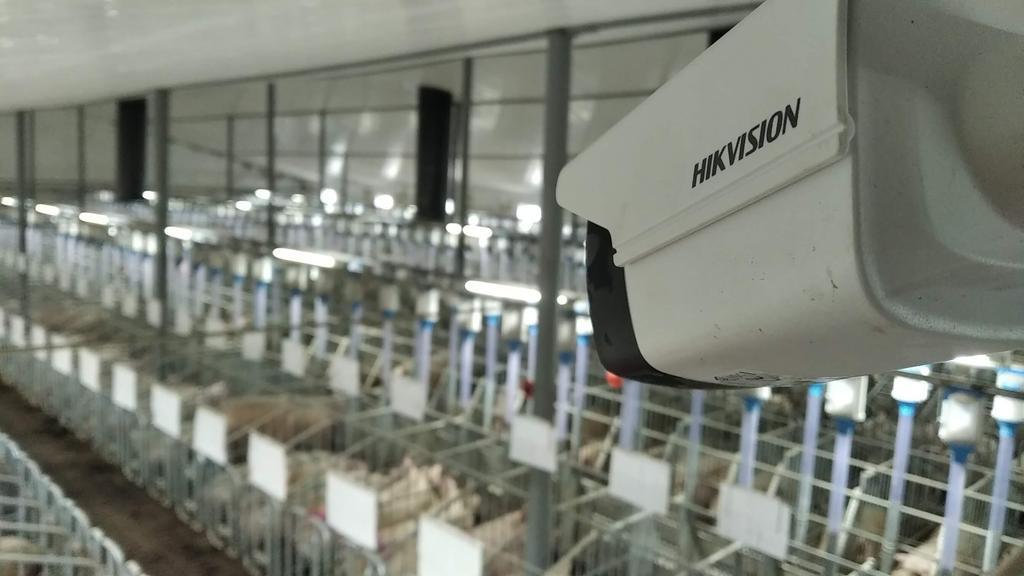 Встановлення (монтаж) відеоспостереження на ферму селі Русин