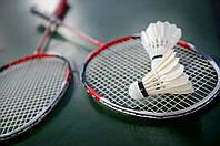 Бадмінтон – популярний серед українців світової спорт з древньою історією