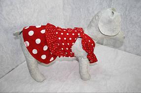 Горошок Такса сарафан для собак ліквідація , фото 3