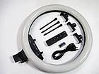 ОПТ Кільцева світлодіодна селфи лампа RGB MJ14 14 см 15 колірних схем і 10 ступенів яскравості, фото 3