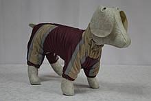 Зоря міні комбінезон для собак ліквідація, фото 3