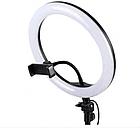 ОПТ Кільцева світлодіодна селфи лампа Selfie Ring Fill Light ZD666 10 Вт D=26 см 5500K - 3200К, фото 3