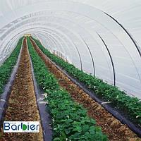Пленка тепличная 200 мкм   16 x 350 м   Barbier Celeste Premium, фото 1